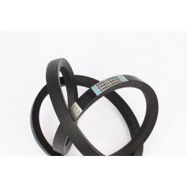 Classical Belt B117 17 x 3020 Lp - 2980Li