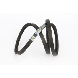 Cogged Raw Edge Belt 16N SPBX - 1850 CL