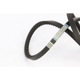 Cogged Raw Edge Belt 16N SPBX - 2020 CL