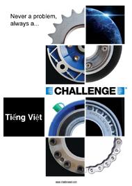 Vietnamese Corporate Brochure