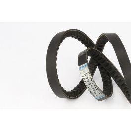 V Belt Cogged BX61 17 x 1590Lp - 1550Li