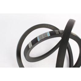 Wedge Belt 22N SPC - 8000